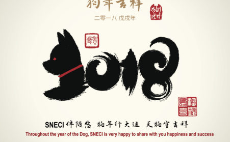 The SNECI Team Wishes You All The Best For The Year Of The Dog !
