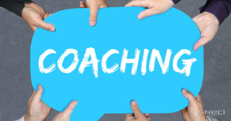 SNECI Coaching Activity, What Is It?
